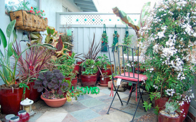 Now is a good time to think and plan about container gardening.