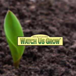 Watch Us Grow